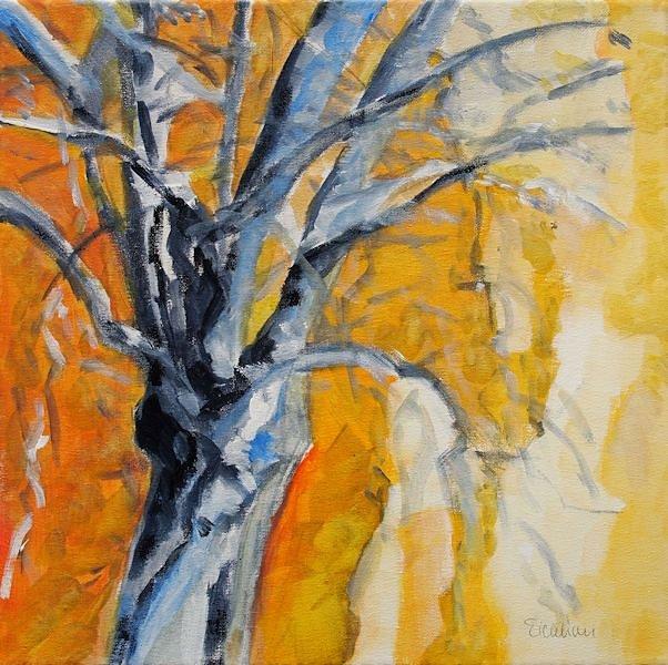 verwundener-Baum.jpg